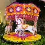 gorgeous flower carousel - great photo spot
