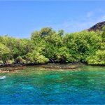Photo de Kealakekua Bay