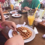 These and more family photos taken this amazing place.  My blueberry waffles were delicious, alo