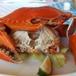 Fresh Ginger Crab