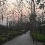 Photo de Manee Dheva Resort & Spa