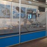 Modellismo Marina militare.