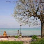Foto de Lugana Parco Al Lago