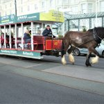 First day this year of the operation of the horse drawn tram passing the Empress