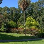 Photo of Fitzroy Gardens