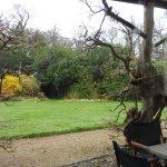 wisteria verandah