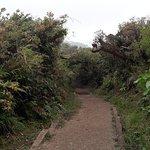 Monteverde Cloud Forest Lodge Foto