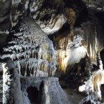 Photo de Domaine des Grottes de Han
