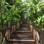 Photo of Marina Phuket Resort