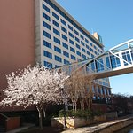 Photo de Embassy Suites Huntsville by Hilton Hotel & Spa
