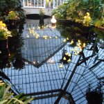 Phipps Conservatory Picture