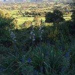 Photo of Farmhouse Stazzo  La Cerra
