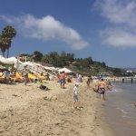 Photo de Paradise Cove