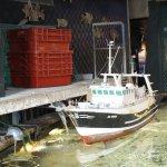 un bassin pour les raies avec une maquette de chalutier et des casiers pour transporter les pois