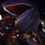 The massive 3 storey high concrete whale battling a Kraken