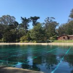 Casting Ponds at Anglers Lodge in golden Gate Park