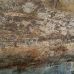 Wall paintings in the rock shelter after a walk of less than half a km from the entrance