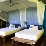 Treetop cabin 3