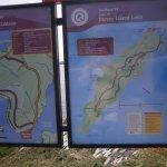 Dursey Island Walk Loop