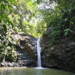 Photo of Uvita Waterfall