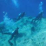 Foto di Go Dive Malta