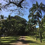 Photo de National Tropical Botanical Garden