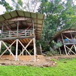 Selva Bananito Lodge Foto