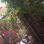 FB_IMG_1491957856115_large.jpg