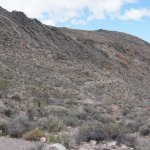 Titus Canyon and Leadfield
