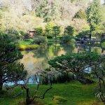 Photo de Seattle Japanese Garden
