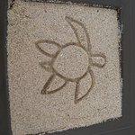 Foto de Sunscape Sabor Cozumel