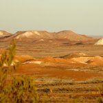 Foto de Arid Areas Day Tours