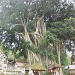 Photo of Kehen Temple