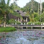 bridge across the pond