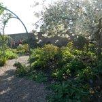 Coughton Court garden