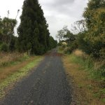 Photo of Hauraki Rail Trail Thames
