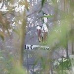 Photo of La Cantinaza