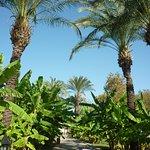 Photo of IC Hotels Green Palace