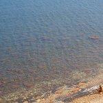 Photo de Topinetti Beach
