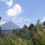 View of the Virunga Volcanoes