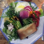 Salad with goat-cheese stuffed phyllo dough
