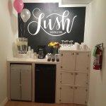 Lush Salon and Spa