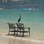 Rodney Bay Foto