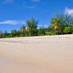 L'eco-hotel sur la plage