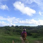 Horseback Riding through Vieques
