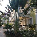 Merrils Beach Resort II Foto