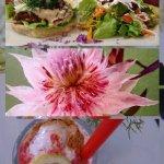 collage-1491982212999_large.jpg