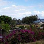 Foto de Banyan Harbor Resort