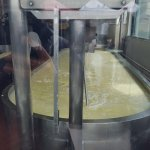 the making of cheese