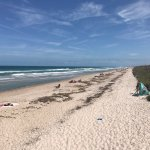 Canaveral National Seashore Foto